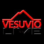 Vesuvio Live - Partner