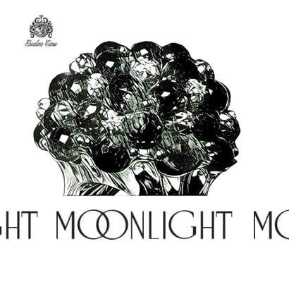 Moonlight Gioielli rivenditore dal 1981 | Gioielleria Caruso Napoli